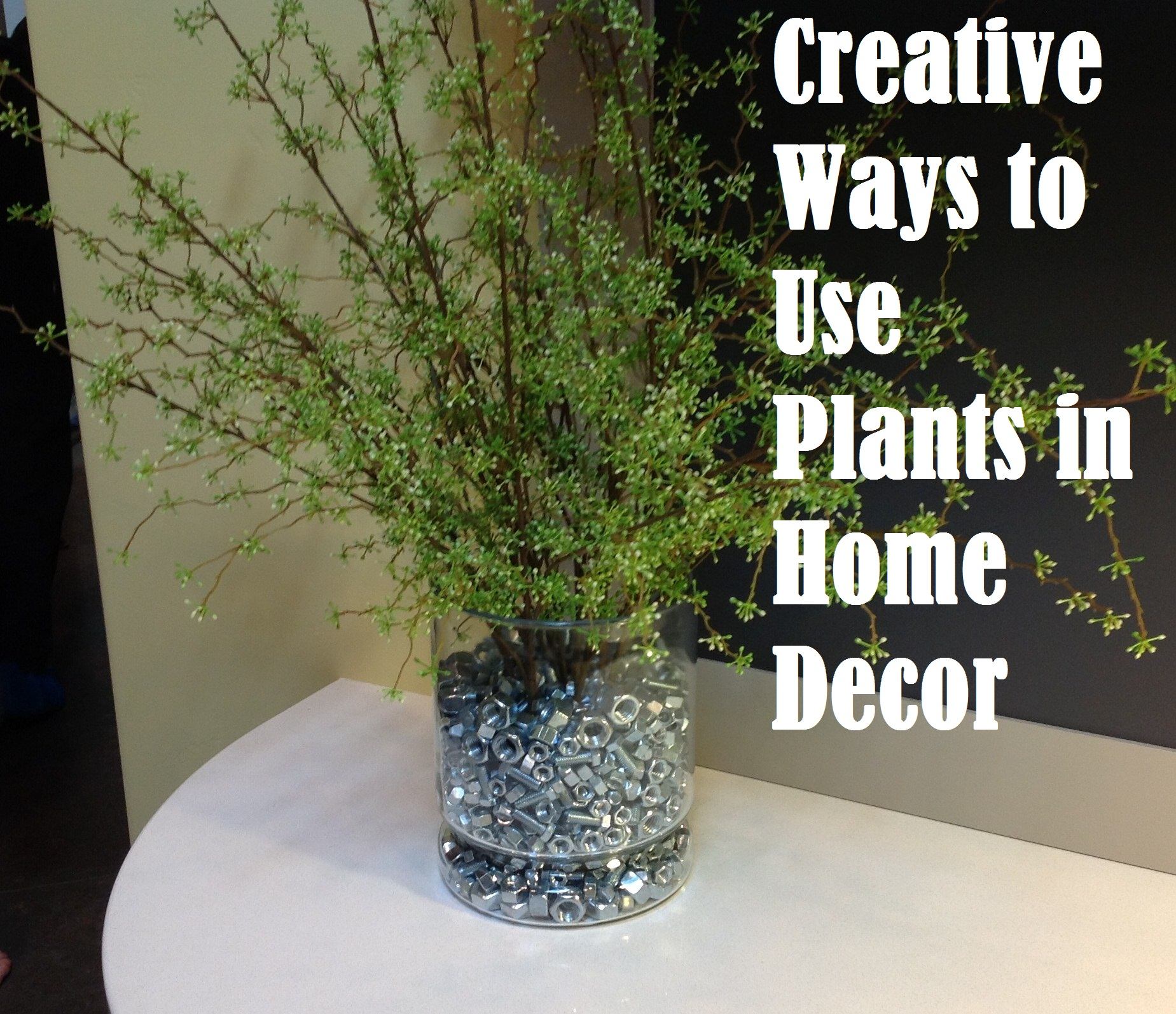 creative ways to use plants in home decor fabulous home ideas