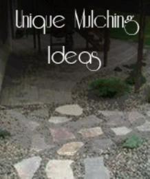 Unique Mulching Ideas (1)