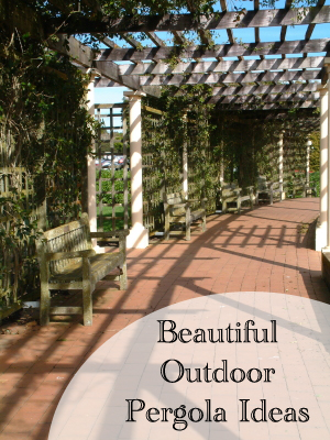 Beautiful Outdoor Pergola Ideas (1)