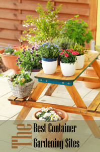 The Best Container Gardening Sites