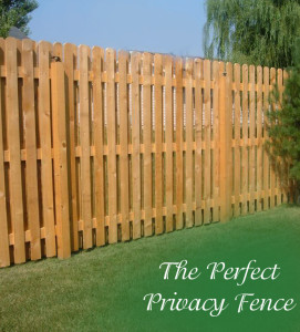 The Perfect Privacy Fence (1)