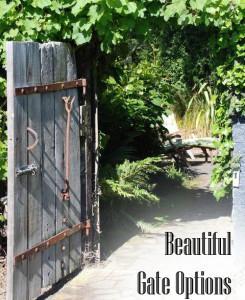 Beautiful Gate Options