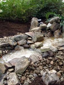 creek in backyard 2