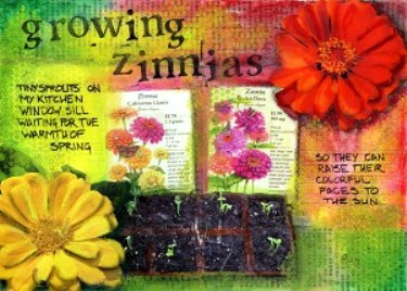 Zinnias for pin