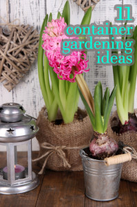 11 Fabulous Container Gardening Ideas